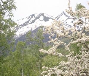 残雪が綺麗な乗鞍岳