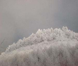 スキー、スノボシーズン間近