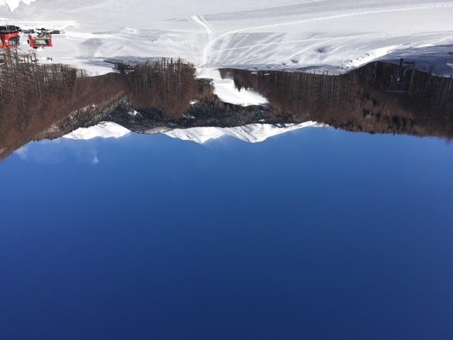 スキー日和です